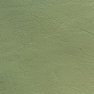 Verde ou de rata