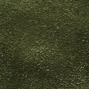 Verde piele intoarsa G22