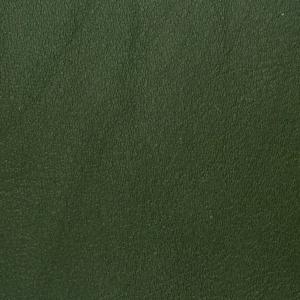 Verde maslina