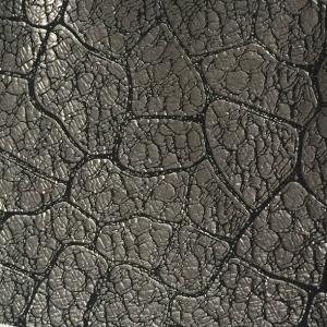 Argintiu croco