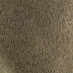 Auriu texturat in dungi