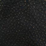 Negru cu picatele aurii