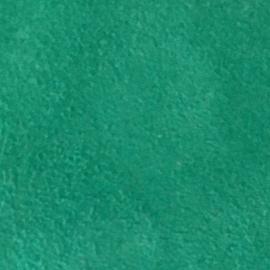Verde deschis piele intoarsa
