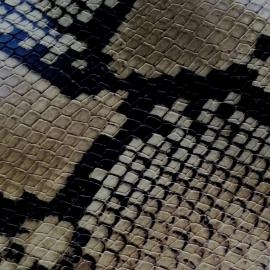 Bej cafe snake print