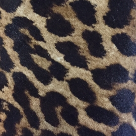 Ponei 1 animal print
