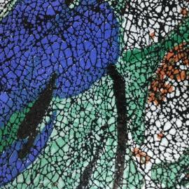 Multicolor pictura